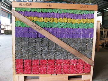 colour coded dowel